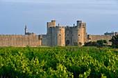 Frankreich, Gard, Aigues-Mortes, mittelalterliche Stadt, Stadtmauern und Befestigungen rund um die Stadt