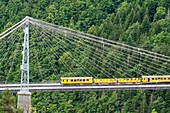 France, Pyrenees Orientales, region of Cerdanya, natural regional park of the Catalan Pyrenees, the yellow tourist train connecting Villefranche de Conflent to Latour de Carol (line Cerdagne), passing over the Bridge of Cassagne or Gisclard Bridge (historical monument in 1987)