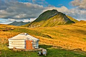 France, Savoie, Beaufortain, Hauteluce, yurt in the pastures at sunset