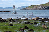Stand-up paddlers on their boards at Milsey Bay, North Berwick, East Lothian