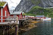 TRADITIONAL RED-PAINTED WOODEN HOUSES, VILLAGE OF REINE, VESTFJORD, LOFOTEN ISLANDS, NORWAY