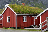 TRADITIONAL RED-PAINTED WOODEN HOUSES, VEGETAL ROOF FOR THERMAL INSULATION, VILLAGE OF REINE, LOFOTEN ISLANDS, NORWAY