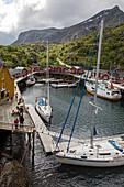 Fischerdorf mit traditionellen Fischerhäusern aus rot und gelb gestrichenem Holz, Nusfjord, Vestfjord, Lofoten, Norwegen