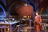 SEVERUS SNAPES' POTIONS CLASS, STUDIO TOUR LONDON, THE MAKING OF HARRY POTTER, WARNER BROS, LEAVESDEN, UNITED KINGDOM