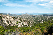 The impenetrable wilderness south of Saint-Florent, Corsica, France.