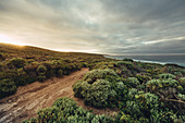 Contos Bay at Margaret River, Western Australia, Australia, Oceania