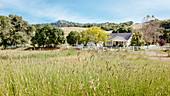 Breggo winery in the Navarro wine region, California, USA