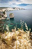 Klippen bei Bonifacio mit Blick Richtung Capo Pertusato, Korsika, Frankreich