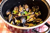 Pot of mussels in restaurant, Concarneau, Arrondissement Quimper, Departement Finistere, Brittany, France, Europe