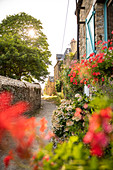 Dreamy path on the city wall with red geraniums on the windows and hydrangeas, Rue du Ruicard, La Roche-Bernard, Vilaine, Morbihan department, Brittany, France, Europe