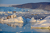 Eqi Glacier in West Greenland; Foothills of the inland ice in the background; floating icebergs and ice floes; Ridges with dark rocks; absolutely clear sky; the silhouettes of the ice mountains are reflected on the calm, blue water surface; Evening sun turns the ice surfaces light yellow