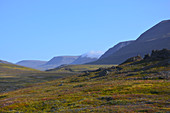 Mountain landscape at Qeqertarsuaq on Disko Island in West Greenland; low grasses and dwarf bushes in autumn colors; rocky, hilly terrain in the foreground; gently rising, rocky mountains in the background; the early morning deep clouds are almost gone;