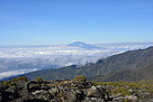 Mount Meru in Tanzania, East Africa, view from Kilimanjaro, sea of clouds, forested mountain slopes