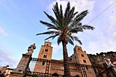 Old town on Duomo with palm tree, Cefalu, north coast, Sicily, Italy
