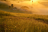 Doldenhof in Jostal-Einsiedel, sunrise, early fog, municipality of Breitnau, southern Black Forest, Black Forest, Baden-Wuerttemberg, Germany, Europe