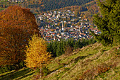 View of Sch? Nau on autumn day, Wiesental, southern Black Forest, Black Forest, Baden-Wuerttemberg, Germany, Europe