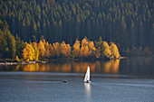 Autumn with sailboat on Schluchsee, southern Black Forest, Baden-Wuerttemberg, Germany, Europe