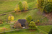 Farms in the Oberm? Nstertal, autumn, southern Black Forest, Black Forest, Baden-W? Rttemberg, Germany, Europe