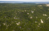 DUNES DE DOVELA ECO LODGE nestled in coastal forest, Dovela, Inharrime, Mozambique.