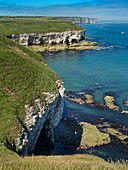 Limestone Cliffs towards Flamborough Head  East Yorkshire UK July