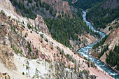 Yellowstone River flowing through Canyon\nYellowstone National Park\nWyoming. USA\nLA006751