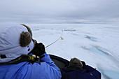 Polar Bear\n(Ursus arctos)\nplaying with ship's mooring rope\nSvalbard