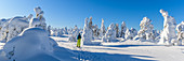 Snowshoeing in Pyhä-Luosto National Park, Finland