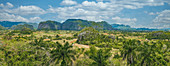 Blick auf die Tabakfelder im Vinales Tal, Pinar del Rio, Kuba