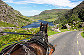 Carriage ride on Gap of Dunloe Road, Augher Lake, County Kerry, Ireland, Europe