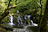 Waterfall on the Canrooska River, Glengarriff Nature Reserve, County Cork, Ireland