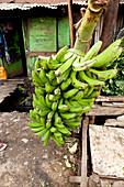 Bananas for sale in the slum, Eastleigh, Nairobi, Kenya