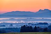 Morning mood over Chiemsee, Hochstaufen in the background, Ratzinger Höhe, Chiemgau, Chiemgau Alps, Upper Bavaria, Bavaria, Germany