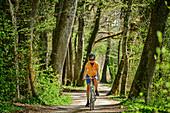 Woman cycling on Chiemseeradweg, Chiemseeradweg, Chiemgau, Upper Bavaria, Bavaria, Germany