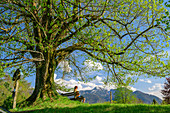 Woman cycling while sitting on bench and linden tree, Chiemsee Cycle Path, Chiemgau, Upper Bavaria, Bavaria, Germany