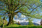 Frau beim Radfahren sitzt auf Bank und Linde, Chiemseeradweg, Chiemgau, Oberbayern, Bayern, Deutschland
