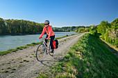Woman rides a bike along the Inn, Marktl, Benediktradweg, Upper Bavaria, Bavaria, Germany