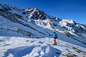 Woman on ski tour climbs to Upiakopf, Upiakopf, Matscher Valley, Ötztal Alps, South Tyrol, Italy