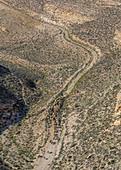 Ein jordanischer Schäfer treibt seine Herde durch die hügelige Landschaft von Shobak, Jordanien