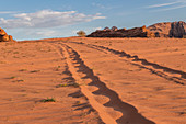 Car tracks in the Wadi Rum desert in Jordan