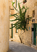 The narrow streets of Victoria, Gozo, Malta