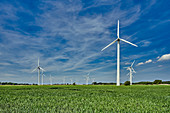 Wind farm in the state of Wursten, Lower Saxony, Germany