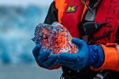 A Zodiac dinghy driver from an expedition ship holds a piece of crystal clear glacier ice, Pio XI Glacier, Magallanes y de la Antartica Chilena, Patagonia, Chile, South America