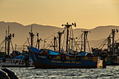 Fishing boats are moored in the late afternoon light, Paracas, Ica, Peru, South America