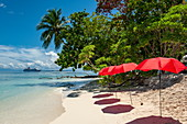 Red parasols line up on a narrow, sunny beach in anticipation of the passengers of the expedition ship MS Hanseatic (Hapag-Lloyd Cruises), Pirumeri Island, Solomon Islands, South Pacific