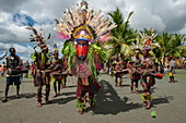 Men in colorful costumes perform a folklore dance to greet passengers on an expedition cruise ship, Kopar, East Sepik Province, Papua New Guinea, South Pacific