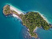 Aerial view of the lush, green island surrounded by water in various shades of blue and green, Isla Gamez, Panama, Central America