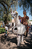 Parade with large figures in the center of San Pedro de Atacama, Atacama Desert, Antofagasta Region, Chile, South America