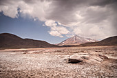 Piedras Rojas lagoon, Altiplanicas lagoon, Altiplano plateau, Atacama desert, Antofagasta region, Chile, South America