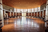 Wine barrels at Lapostolle Winery, Santa Cruz, Colchagua Valley (wine growing area), Chile, South America