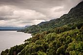 üppige Vegetation am bergigen Ufer des Lago (See) Ranco, Region de los Lagos, Chile, Südamerika